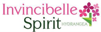 invincibelle spirit