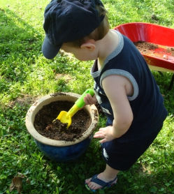 childs garden national garden bureau