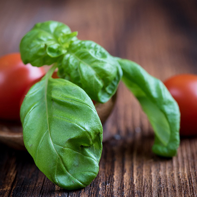 Pesto – Summer and the Living is Easy!