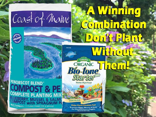 Plant It Right!