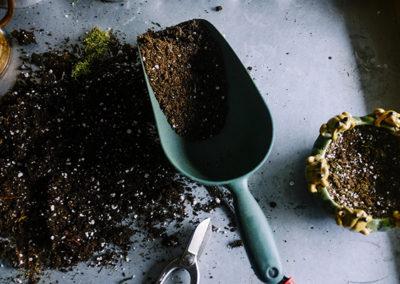 Soil Selection – It's a Dirty Job But…